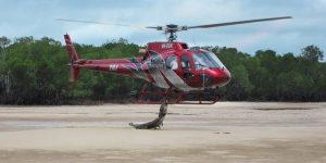 Crocodile Attacking a Helicopter