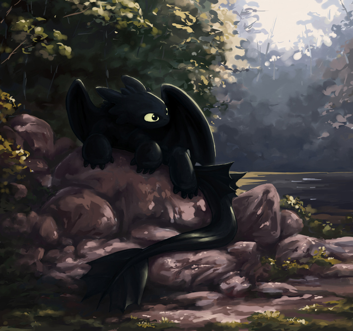 Toothless resting on some rocks, surrounded by trees, and the sun shining